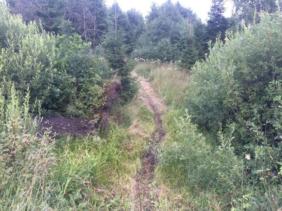 , Uhtjärve jooks 23 juulil Urvastes, Täppsportlased